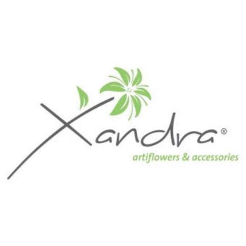 Logo Xandra